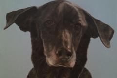 Stanley 2015 oil on wood panel 18 x 24